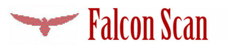 Falcon Scan
